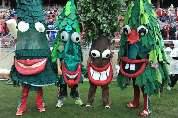 Stanford-Tree-Mascot-Monday-e1442595528306